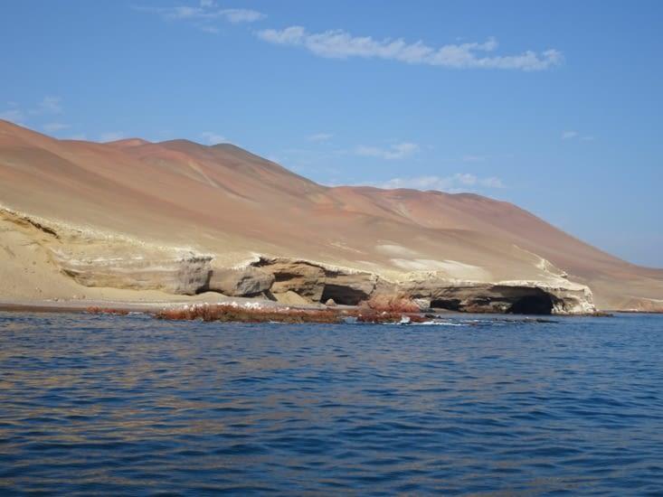 La réserve naturelle de Paracas