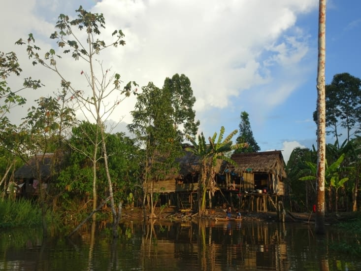 Les maisons en bois en Amazonie