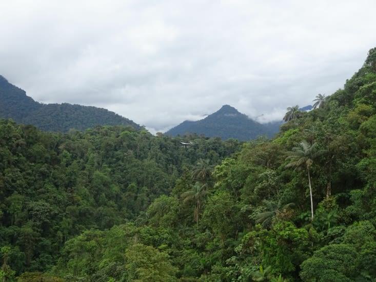 Les montagnes de Mindo