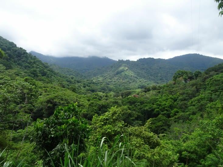 Les montagnes de Minca