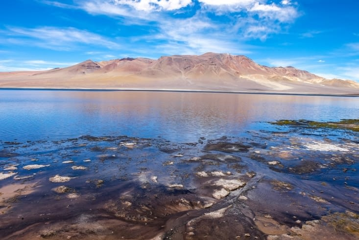 La route des salars - Laguna Negra du Salar Aguas Calientes