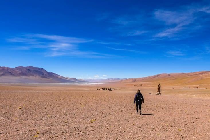La route des salars - Seuls au milieu du désert le plus aride au monde