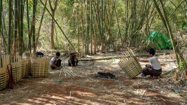 Des hommes fabricants les fameux paniers de birmanie