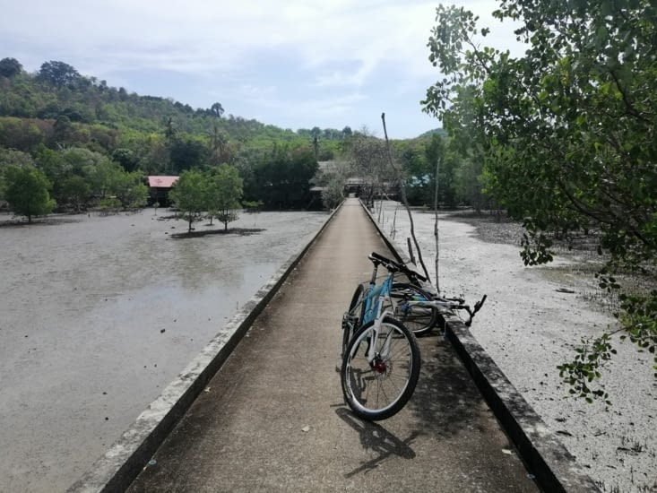 Balade en vélo autour de l'île.