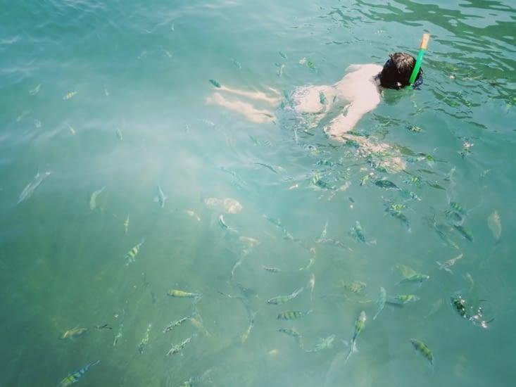 Vingt centimètres sous la mer.