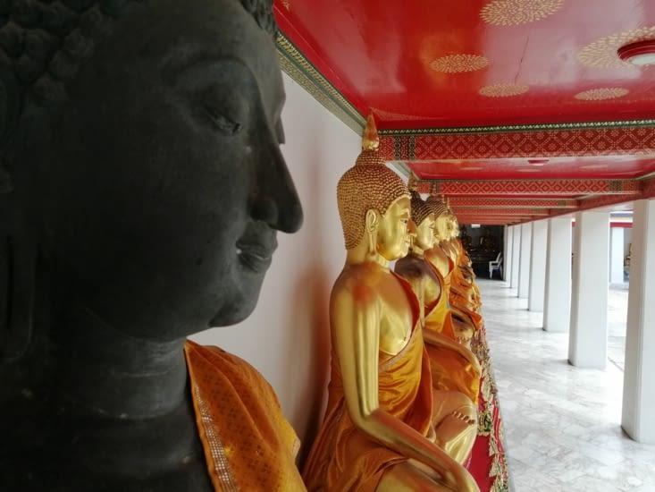 Tout plein de bouddhas