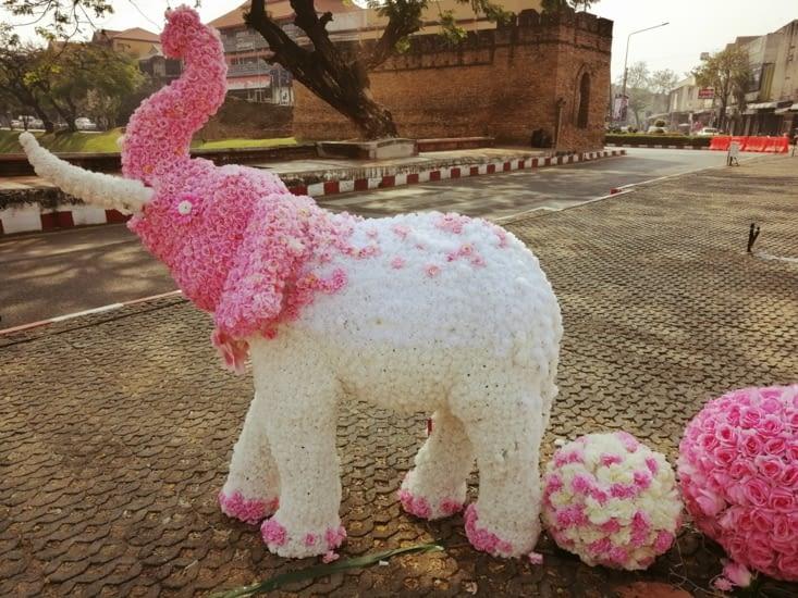 On a vu des éléphants roses.