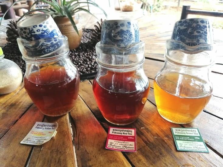 Différents thés produits sur le plateau des Bolavens