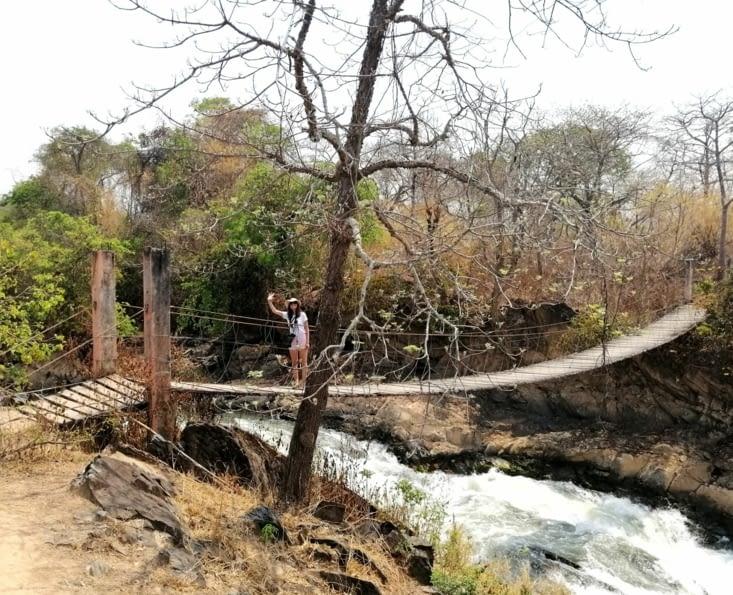 Pont de singe au-dessus des rapides.
