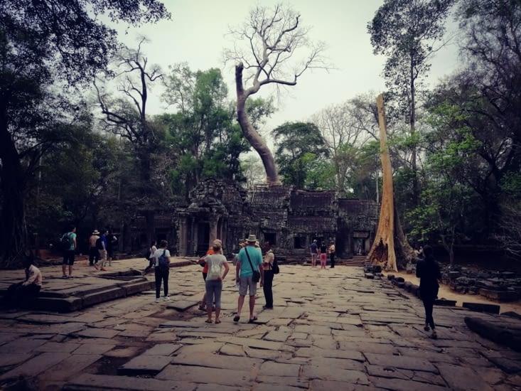 Ça continue, Angkor et Angkor.