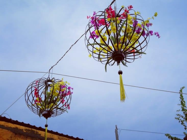 Lampions en fleur.