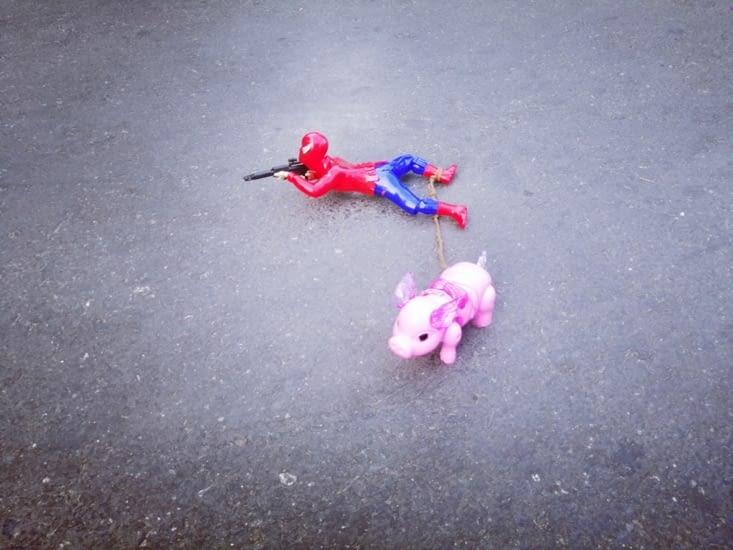 Spider-cochon.