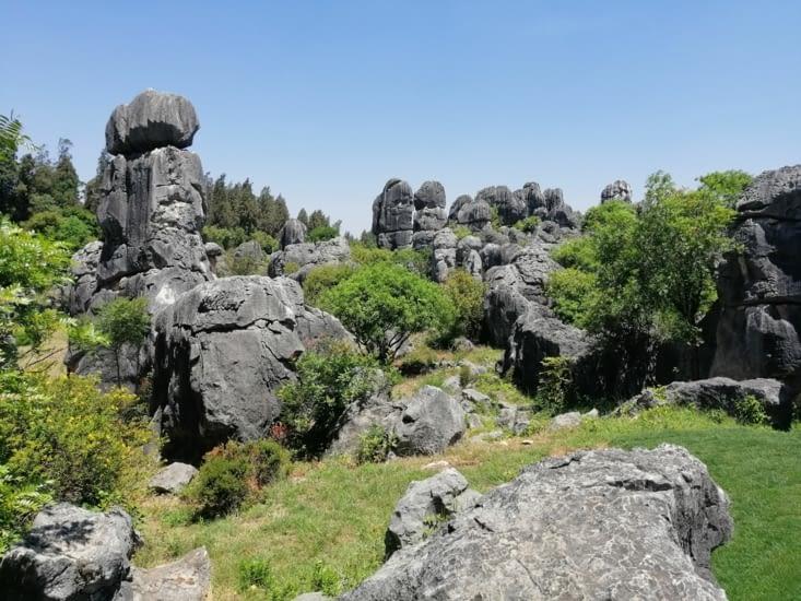 L'entrée dans la forêt de pierres.