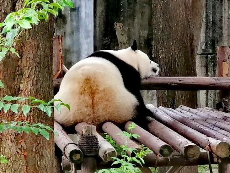 C'est une dure journée.