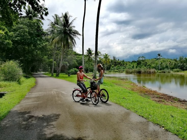 Balade à vélo.