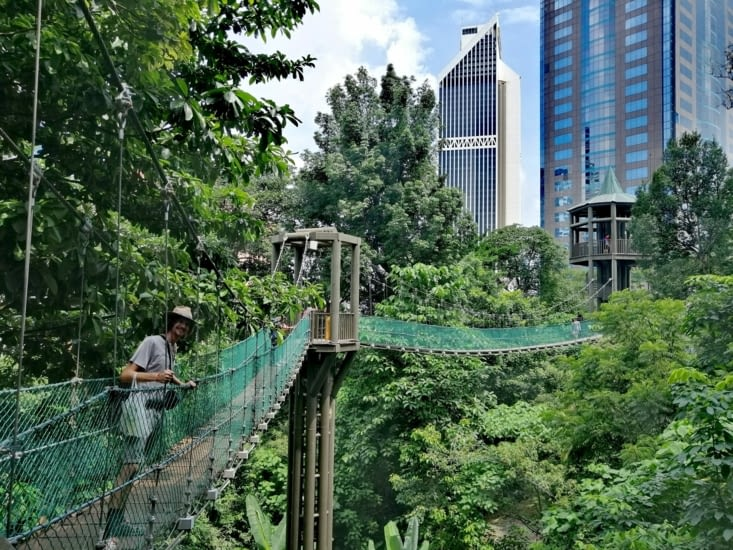 Tarzan en plein centre-ville.