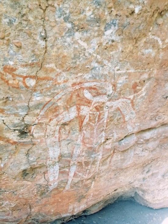 Peintures rupestre de Burrungie.