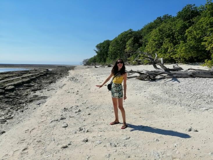Une plage de coraux