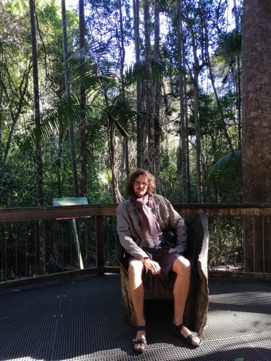 Le roi des bois