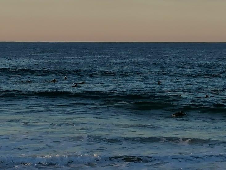 Un banc de surfeurs