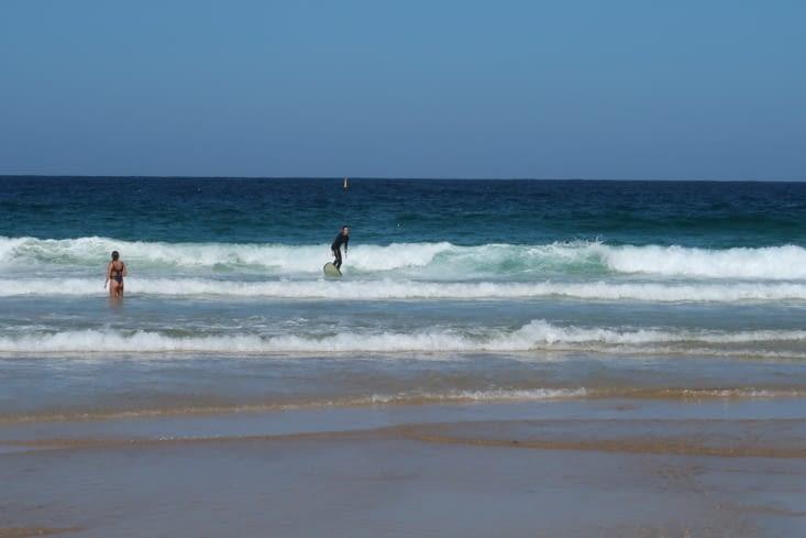 Les surfeurs de la plage de Maroubra