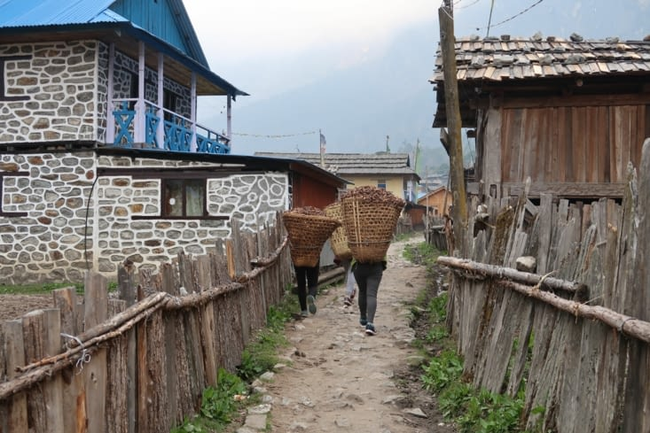 Arrivée au village de Ghunsa