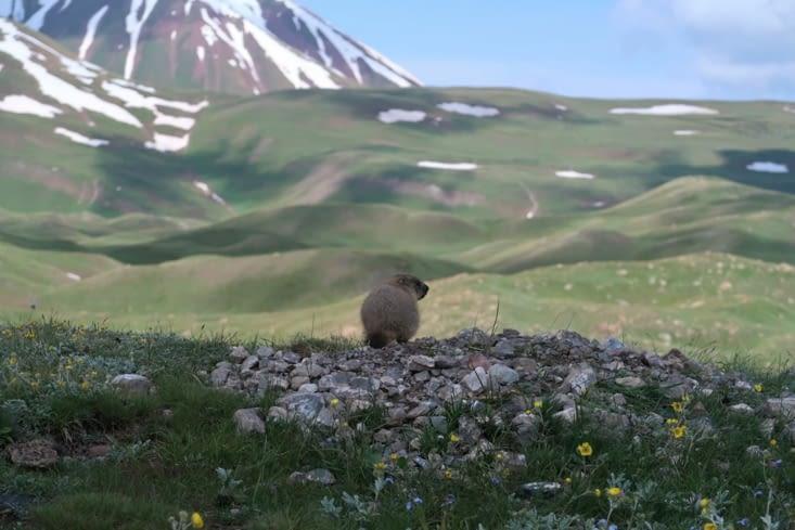 Au revoir le Kirghizistan !