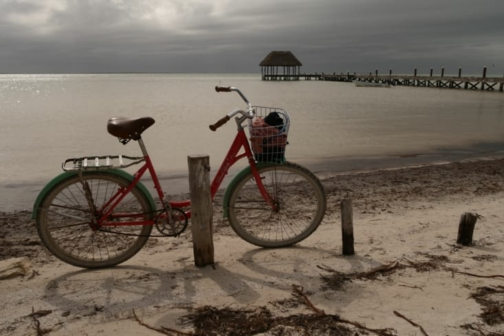En vélo / Biking