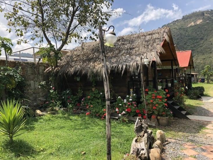 Cabane / Cabin