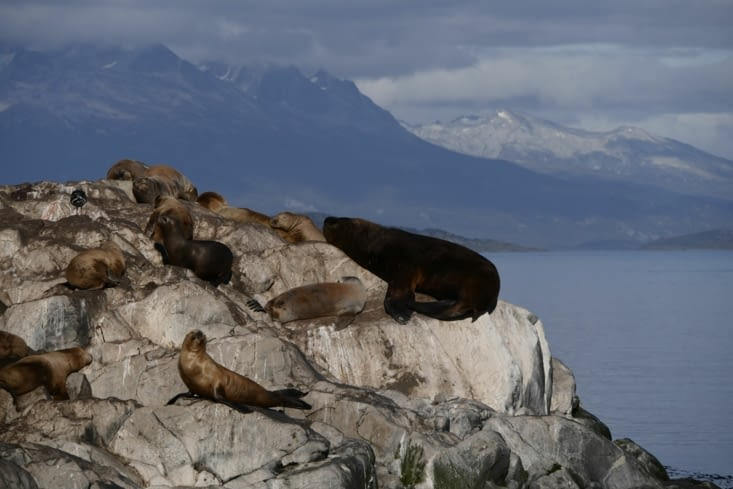 Canal Beagle / Beagle channel