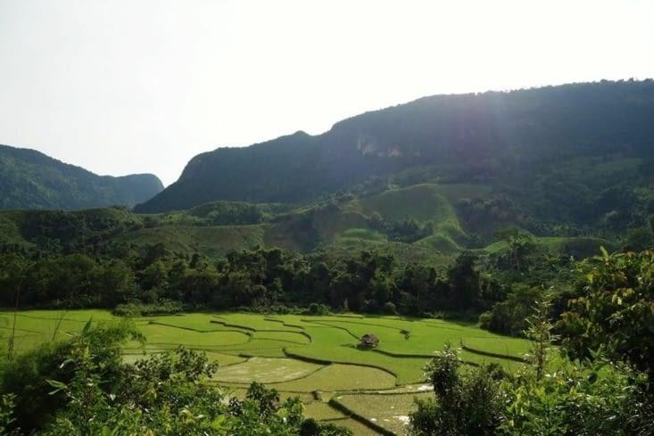 Champs dans les montagnes / Fields in the mountains