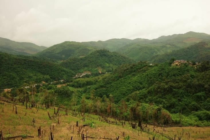 Les champs de riz dans les montagnes / Rice fields in the mountains