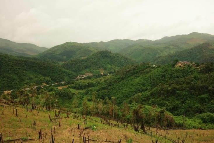 Les champs de riz dans les montagnes / Rice fields in the mountains