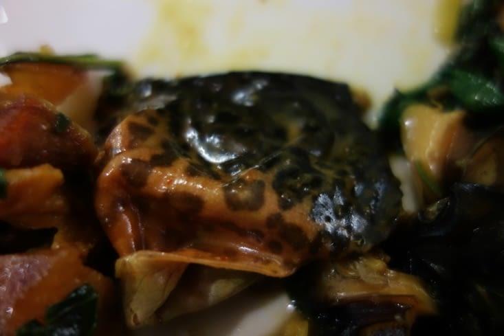 Peau de grenouille en dessert ;-) / Frog skin in desert ;-)