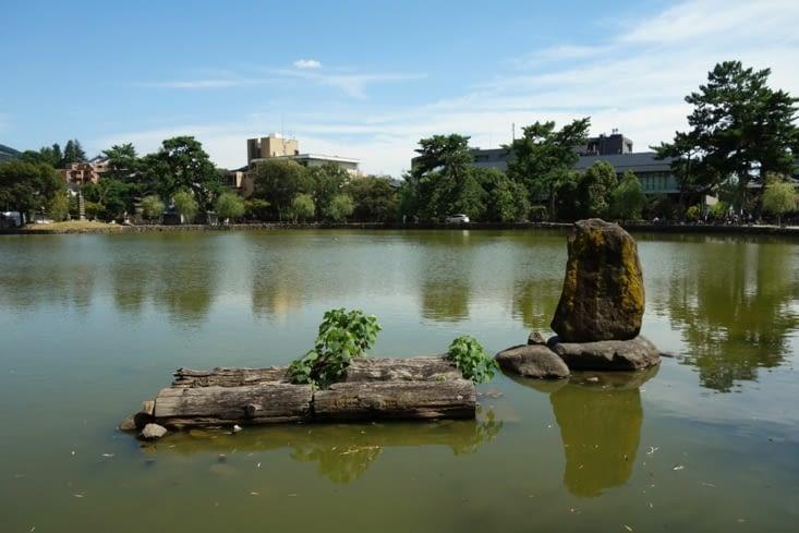 Etang près du parc / Pond near the park