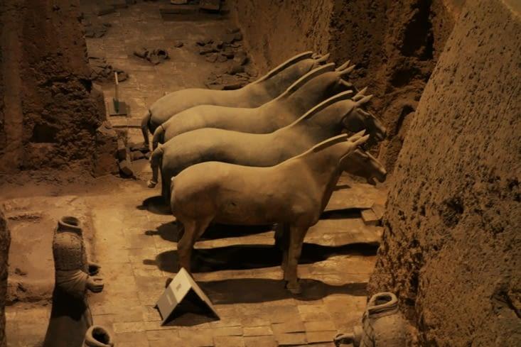 Chevaux en terre cuite / Terracotta horses
