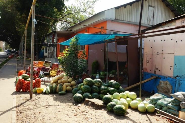 Grosses pastèques / Big Watermelon