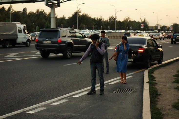 Stop / Hitchhiking