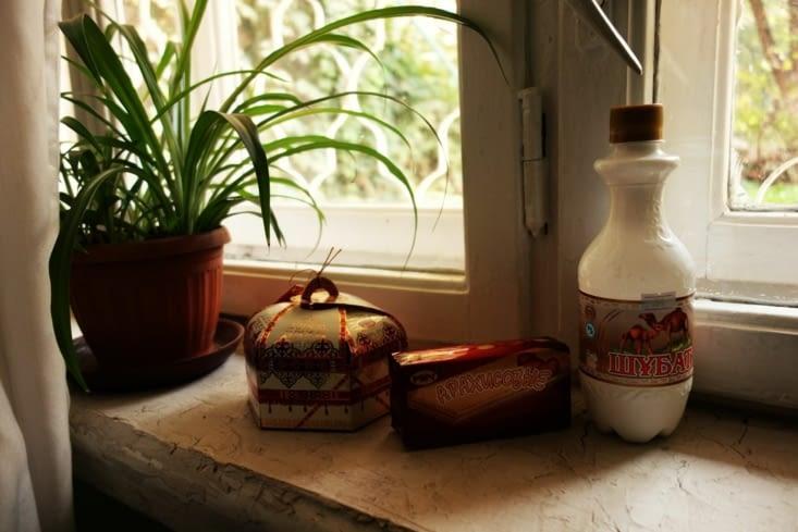 Yourte de chocolat et lait de chamelle / Yurt of chocolat and camel milk