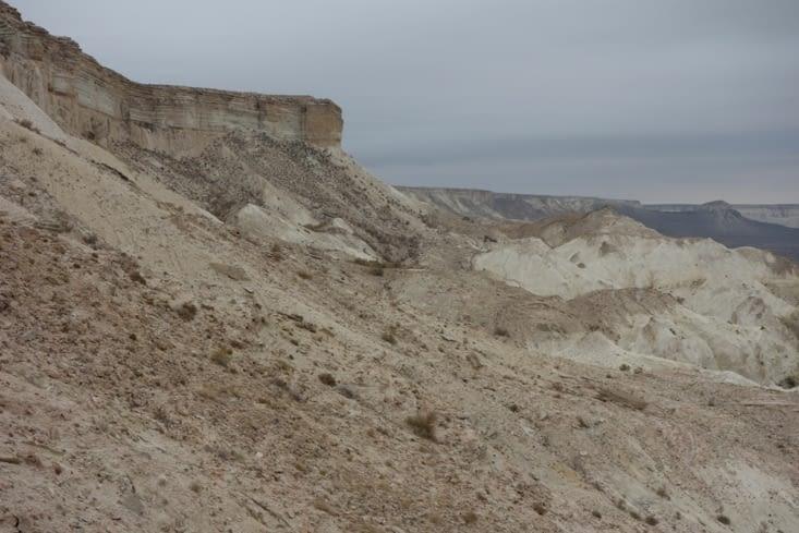 Un sol crayeux / Chalky soil