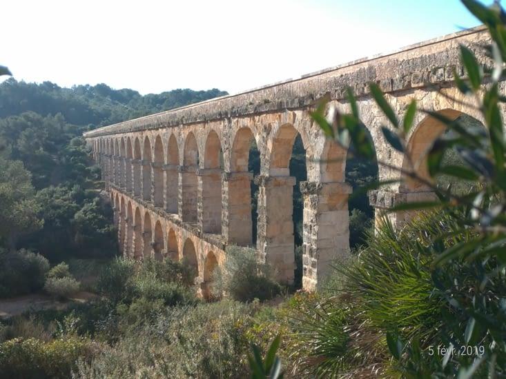 L'aqueduc surgit de la garrigue, il est majestueux dans le soleil levant.