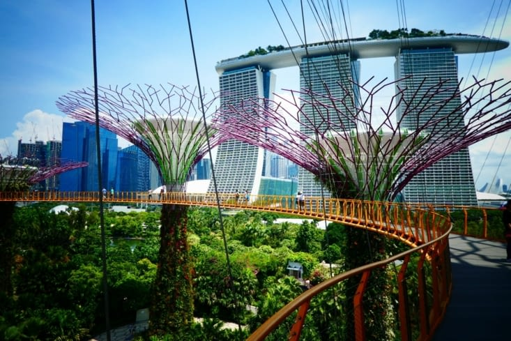 Marina Bay Sands hotel and the Garden by the Bay
