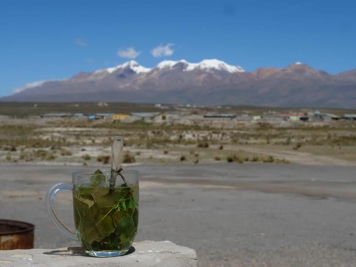 Inca Tea et volcan