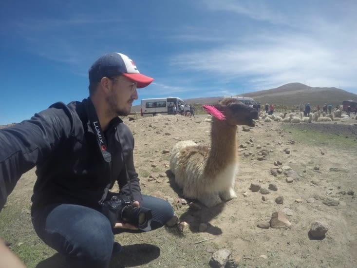 Premier selfie avec mon lama