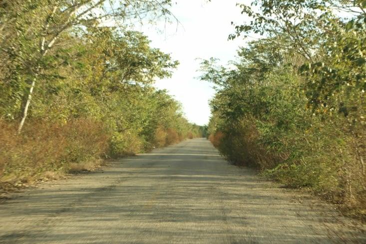 Route vers Uxmal