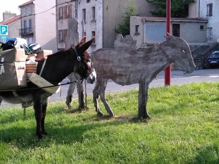 Sancho en pleine réflexion   cela ressemble à  un âne  mais ne sent pas l'âne