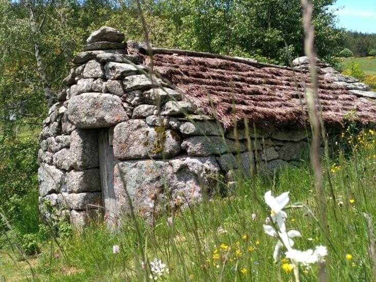 Petit moulin cachant le beau pré de Sancho