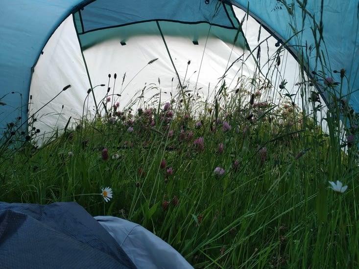 et oui c'est l'intérieur de la tente... Bonne nuit les petits,
