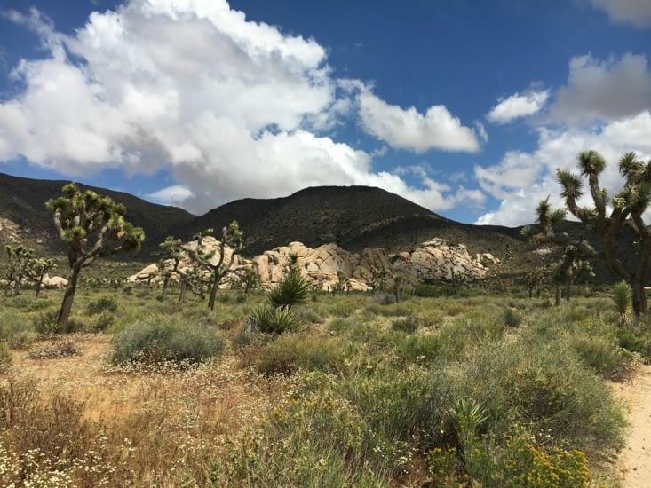 Ryan Ranch Trail