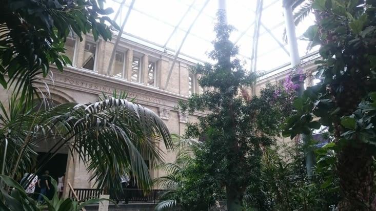 Jardin intérieur du musée